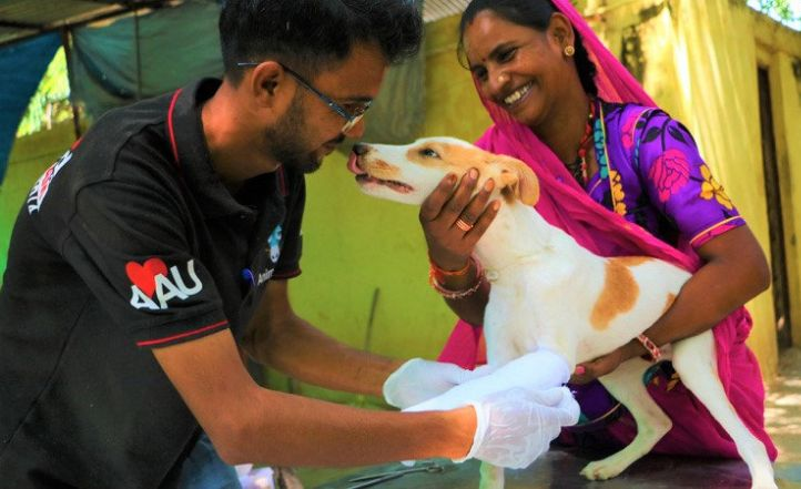 Horrified by cruelty, this animal lover started an NGO that has rescued more than 6,000 animals in Karnataka